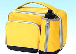 600D_Polyester-Cooler-Bag-HIB252_12 cans_www.hotsalegroup.com